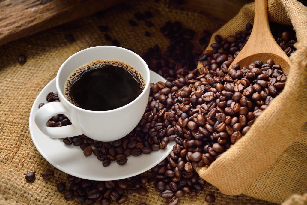 Nombre_cientifico_del_cafe