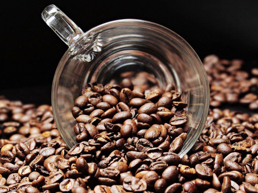 cafe_excelsa_1