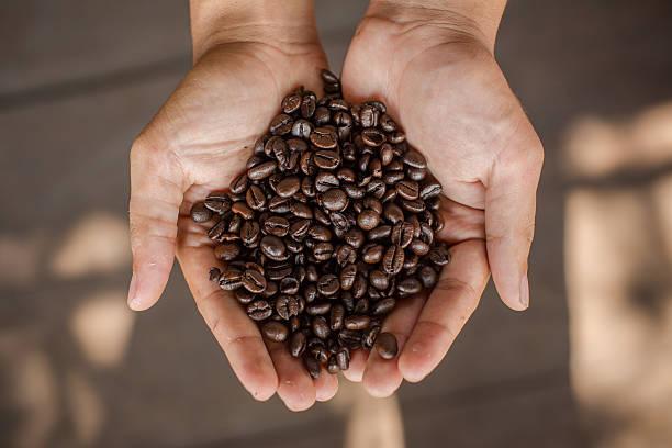 cafe_liberica_1